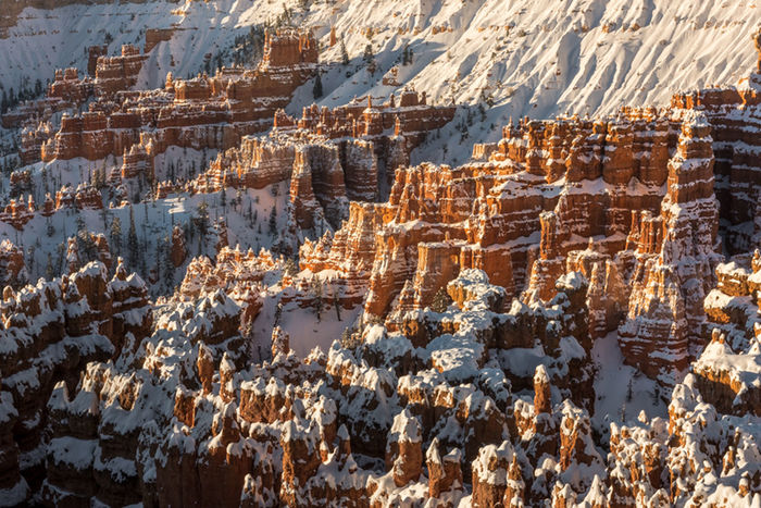 Hoodoo's of Bryce. Bryce Canyon Cliff Composition Day Elevated View Eroded Geology High Angle View Nationalpark Perspective Rock Rock Formation Rocky Sunrise Textured  Travel Photography Winter Winter Wonderland
