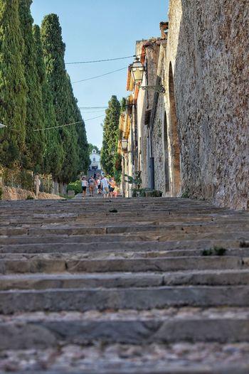 Avenue Mallorca