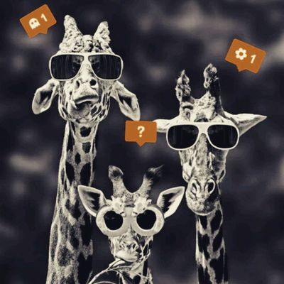 What do you want from us? Giraffes Coolkids Giddyology  Bnw Cute Tumblr