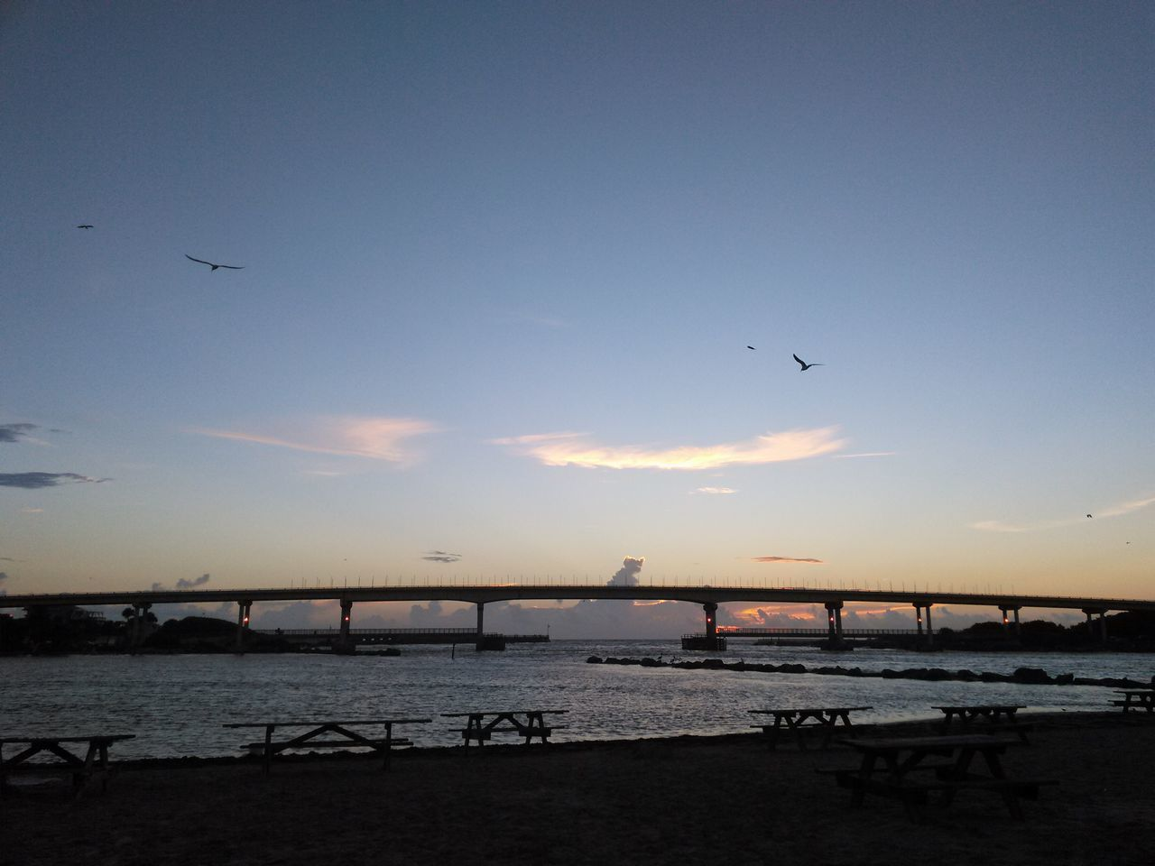 sunset, bird, bridge - man made structure, silhouette, flying, sky, water, connection, built structure, architecture, sea, nature, outdoors, animals in the wild, no people, animal themes, clear sky, scenics, beauty in nature, city, day
