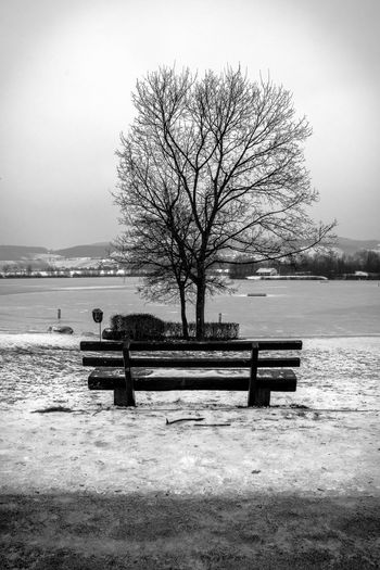Sit down Bench Park Bench Tree Nature Beauty In Nature Water Sky Landscape No People Single Day EyeEm Best Shots - Nature EyeEmNewHere Streetphotography EyeEmBestPics EyeEm Best Shots EyeEm Best Edits EyeEm Gallery Eyeemphotography Nikon Eye4photography  Heilbronn Romantic Clear Sky Love ♥