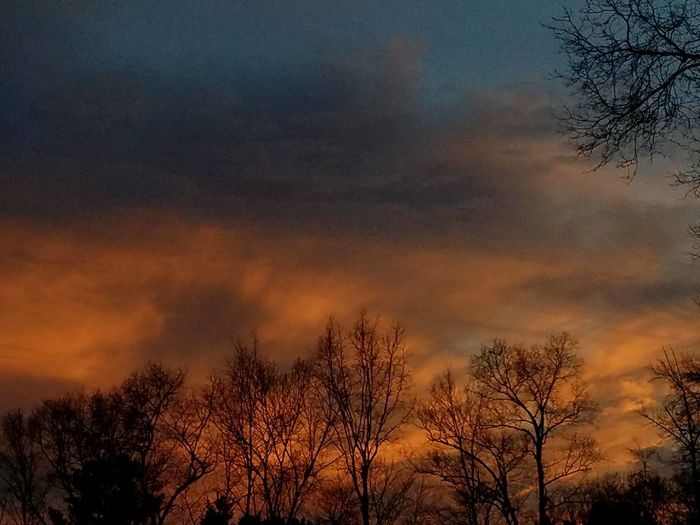 Sunset in Ct. The Purist (no Edit, No Filter) Popular Photos Outdoors Beauty In Nature Sun Sunset Scenics Sky Tranquil Scene Winter 2017 The Purist (no Edit, No Filter) Eyeem Best Shots Eyeemnaturelover Eyem Best Shot Eye4photography Samsungphotography Silhouette Trees In Winter Treesandsky