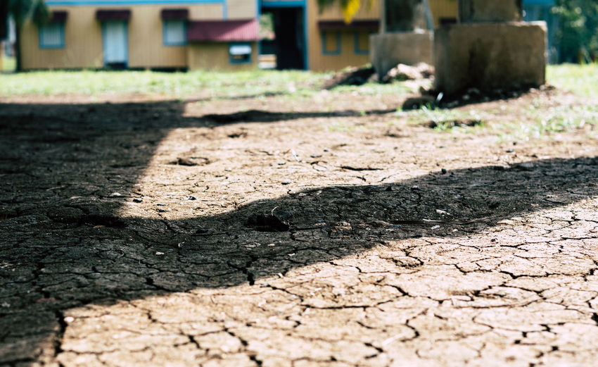 Biran, Cuba - September 1, 2017: Dry cracked soil at the plantation where Fidel Castro grew up reveals how hot the temperature can be on the caribbean island. Communism Cuba Grew Up Home Scorching Heat Sunny Tropics Birthplace Caliente Caribbean Childhood Cracked Ground Cuban Dry Estate Family Home Fidel Castro Hot Temperature Plantation Soil Tropical Island Tropics Or Subtropics Warm Climate