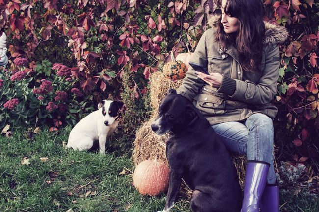 Woman relaxing outdoors with dogs on haystack using mobile phone in autumn weather Portrait Autumn Dogs Cute Dog  Pets Mammal Domestic Animals Domestic One Animal Canine Dog Plant One Person Lifestyles Sitting Real People Leisure Activity Nature Women Pet Owner Day Autumn Mood