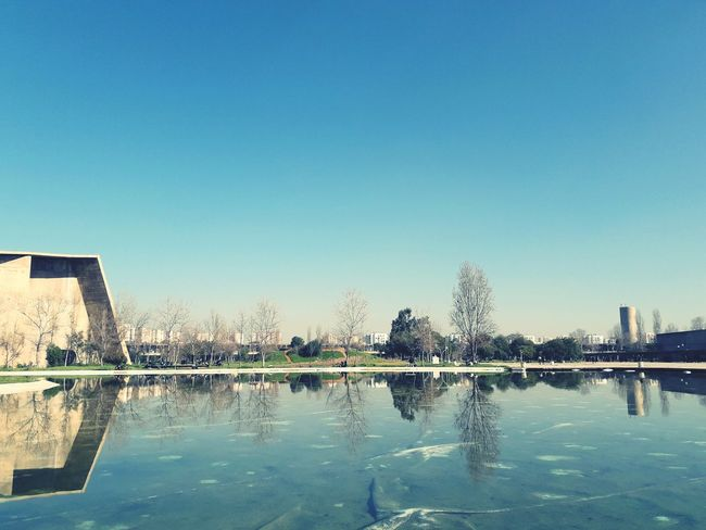 Usthb EyeEmNewHere Water Reflection Outdoors Sky Clear Sky Day Blue Architecture City No People