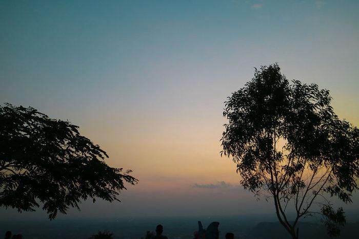 🌅 INDONESIA Wonderfulindonesia Tree Sunset Tree Area Silhouette Sky