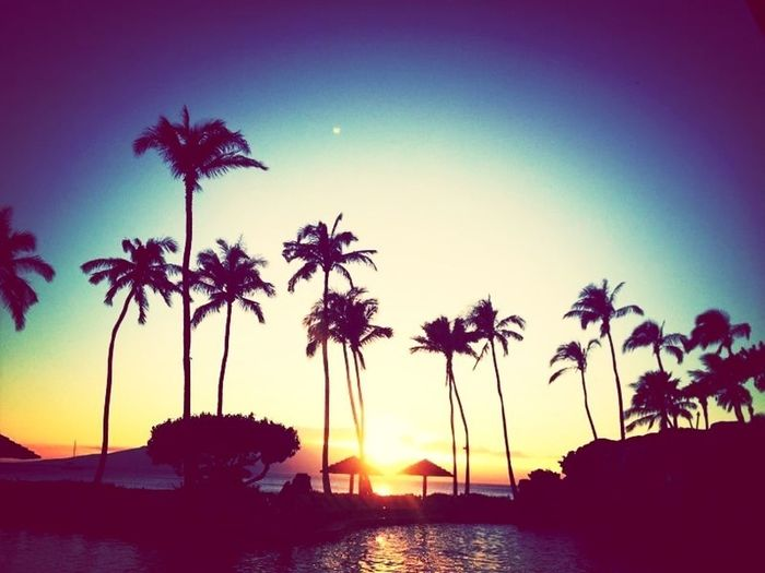 Beach Sunset Enjoying The View Enjoying Life