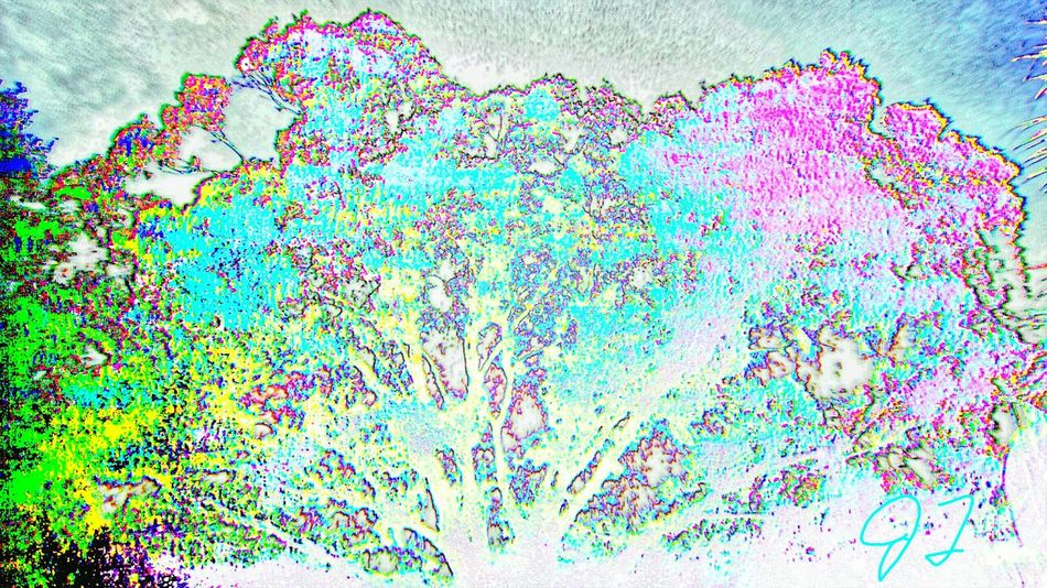 """""""Color Tree 3"""" The Innovator The Innovator Electronic Art Computer Art ManyColors Colorful Color Colors Multicolored Multi Colored Effect Art Photography Artphotography Magic"""
