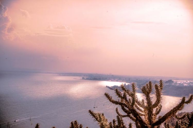 Tranquil Scene Tranquility Sunset Sea Sky Water Horizon Over Water Tree Beauty In Nature Nature Tunisia Sidibousaid First Eyeem Photo