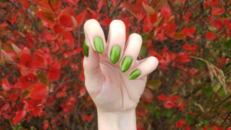 Cropped hand of woman showing her green nail polish on fingernails against red flowers