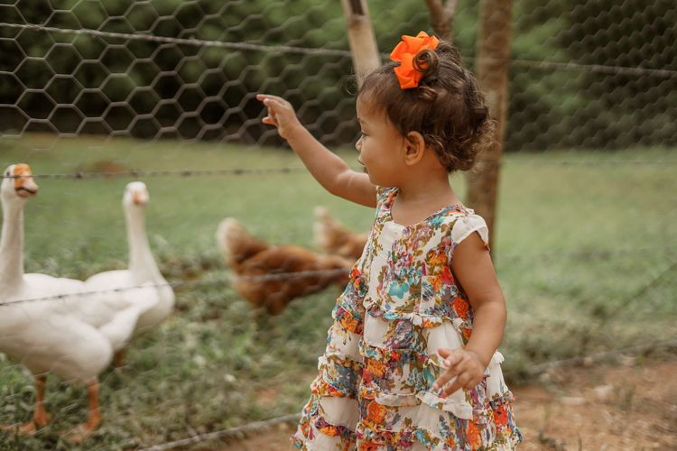 Cute girl looking at ducks at park