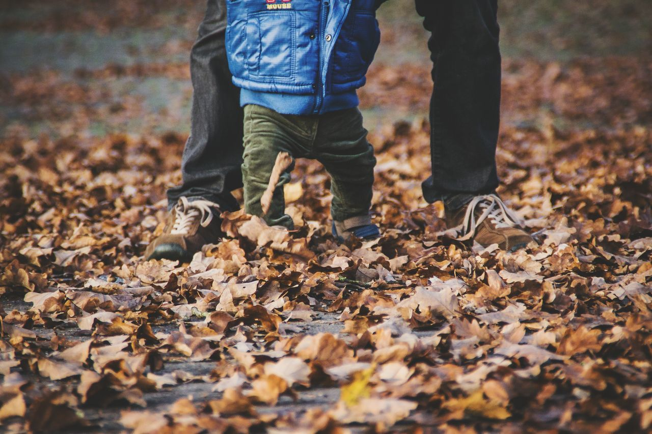Low section of father and son walking on autumn leaves