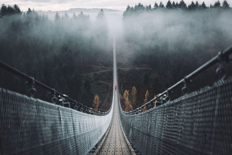 First time at the longest Suspension bridge in Germany Transportation The Way Forward Day No People Nature Outdoors Vscofilm Sunrise