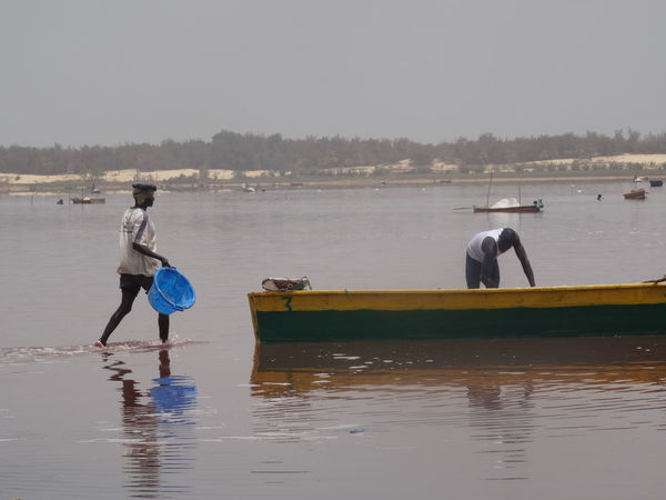 Lake Retba Beauty In Nature Boat Day Lake Rebta Men People Working Hard People Working Together Salt Work