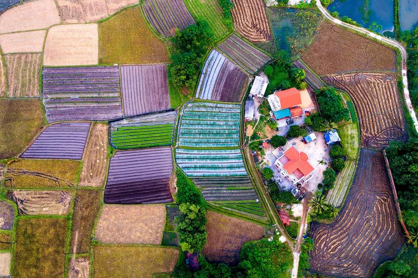 Brocade Dronephotography Landscape