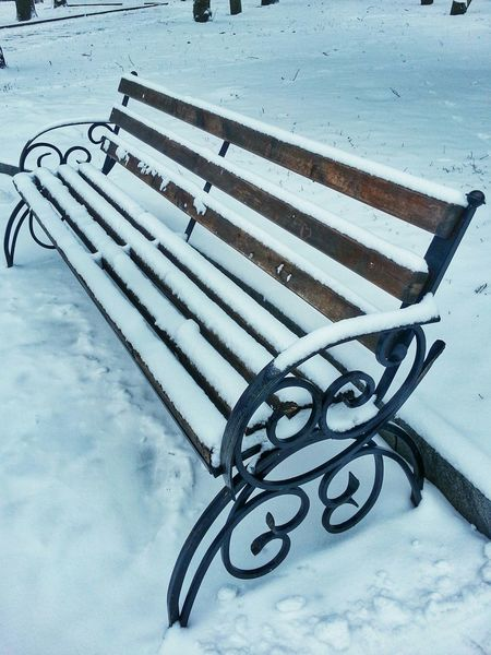Fresh snowfall in late January. Zhytomyr Ukraine Fresh Snow Benches Benches_Of_The_World_Unite Житомир Україна
