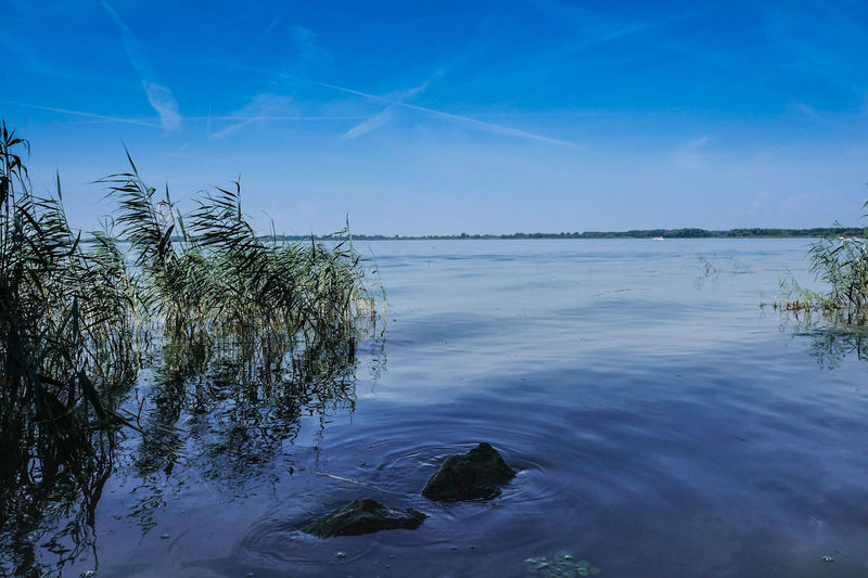 Blue Landscape Lake Sky Reflection Water Outdoors Nature Tranquility Clear Sky Scenics No People Beauty In Nature Day Tree Sunset Horizon Over Water Puszta Travel Destinations Hungary First Eyeem Photo EyeEm Best Shots Taking Photos Tranquility Water_collection