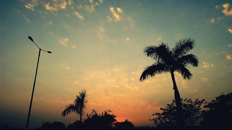 Palmbeachroad Sunsetlover