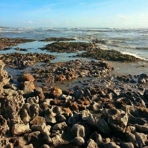 First sun for weeks. Wales Coast Sea Igwales Jurassic