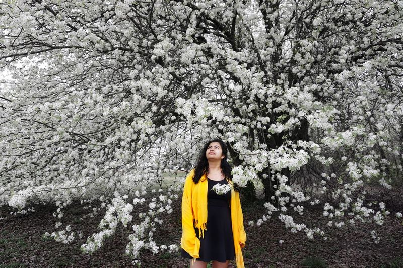Tree Flower Front View Nature Yellow One Person Looking At Camera Beautiful Woman Springtime Standing Portrait Smiling One Woman Only One Young Woman Only Adult Beauty Outdoors Only Women Happiness Day