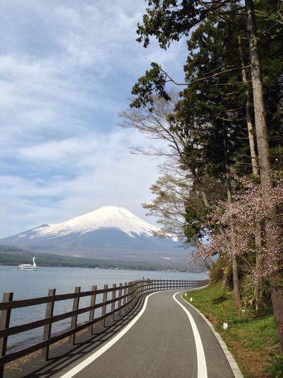 山梨 山中湖 富士山 サイクリングロード
