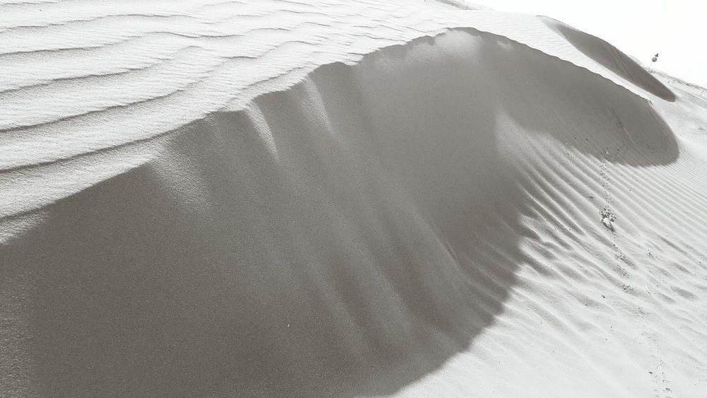 Light & Shadow Light Shadow Sand Blackandwhite Black And White Black & White Black&white Dune Dunes Desert EyeEm Best Shots