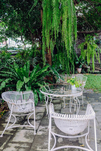 Empty chairs and tables in garden