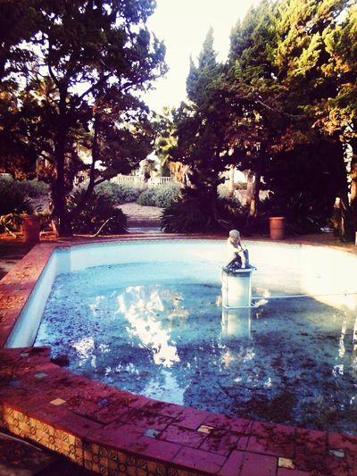 Forgotten Fountain Rainy Day