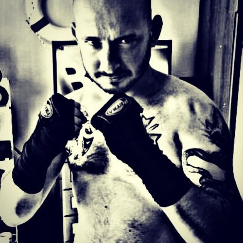 Kickbox Ultimate fight UFC