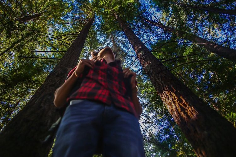 Low Angle View Of Man Standing Amidst Trees At Forest