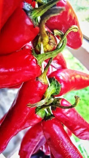 Peppers Pepper