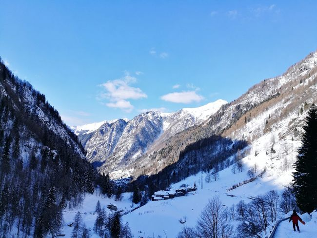 Landscape EyeEm Selects Snow Mountain Winter Mountain Range Cold Temperature Pinaceae Snowcapped Mountain
