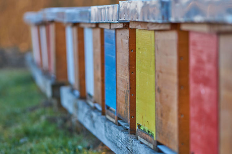 Austria Bee Case Bee 🐝 Blackandwhite Close-up Colerfull Day Focus On Foreground Hive Hivers Honey Honey Bee Multi Colored No People Outdoors Red Styria Wood - Material Yellow