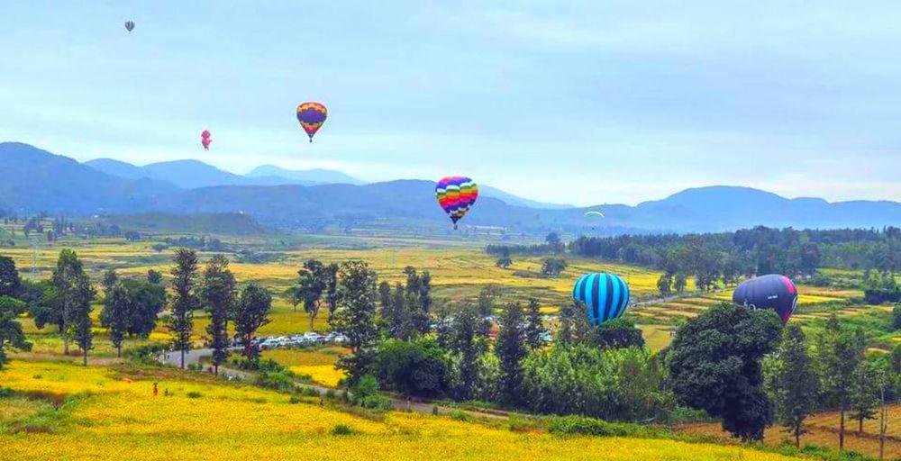 Hot air balloon flying over landscape against sky