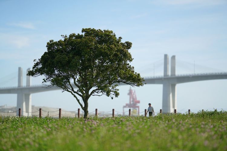 People on bridge against sky