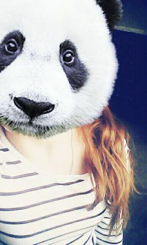 I love panda^_^
