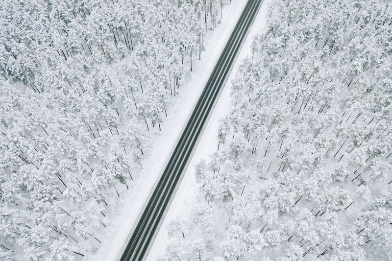 High angle view of road amidst snow covered trees