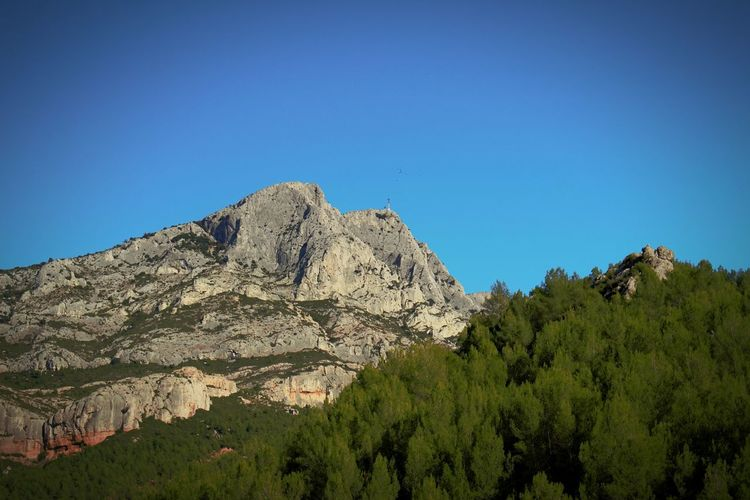 Sainte Victoire Tree Mountain Blue Desert Sky Landscape