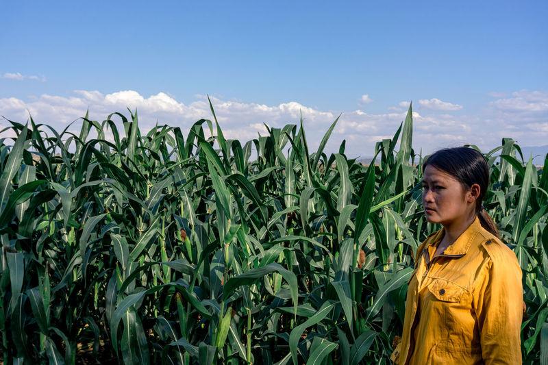 Woman looking away by plants growing in farm