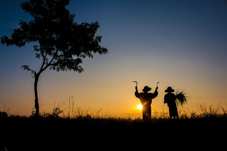 Silhouette farmers harvesting on field against sky during sunset