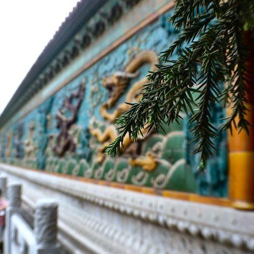 The Forbidden City  Beijing Palace Nine Dragon Screen