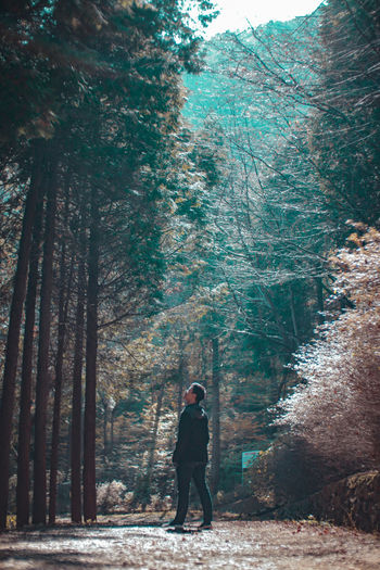 Full length of man standing amidst forest