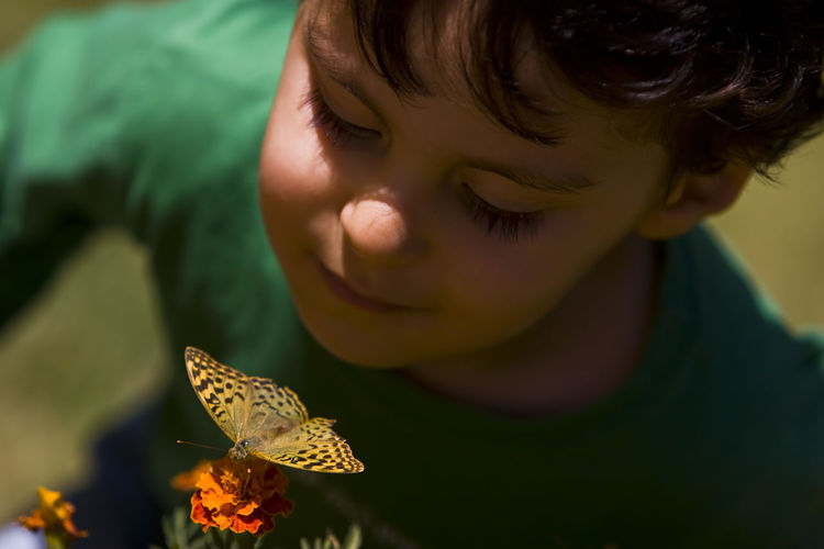 Close-up of boy looking at butterfly pollinating flower