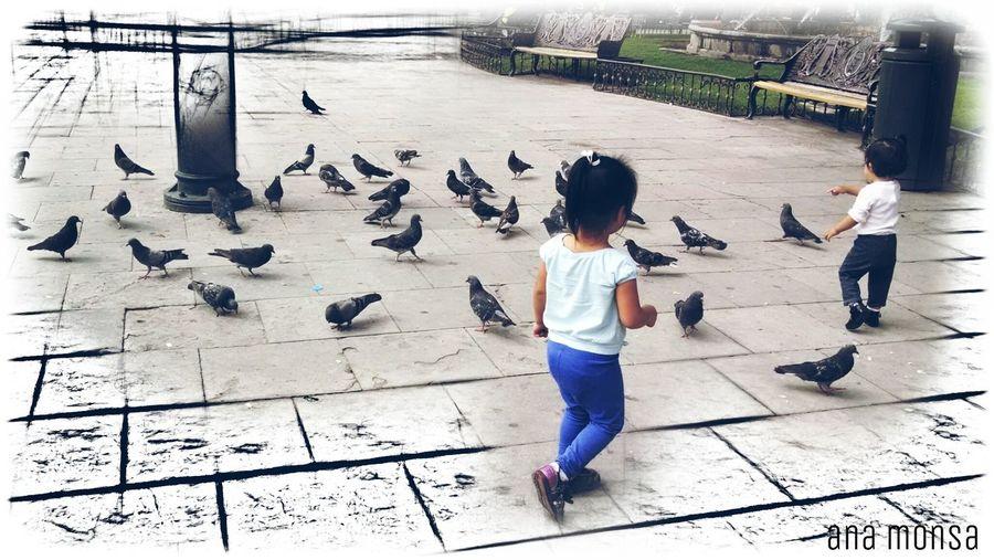 Juego de niñ@s People Travel Urban Geometry Edition