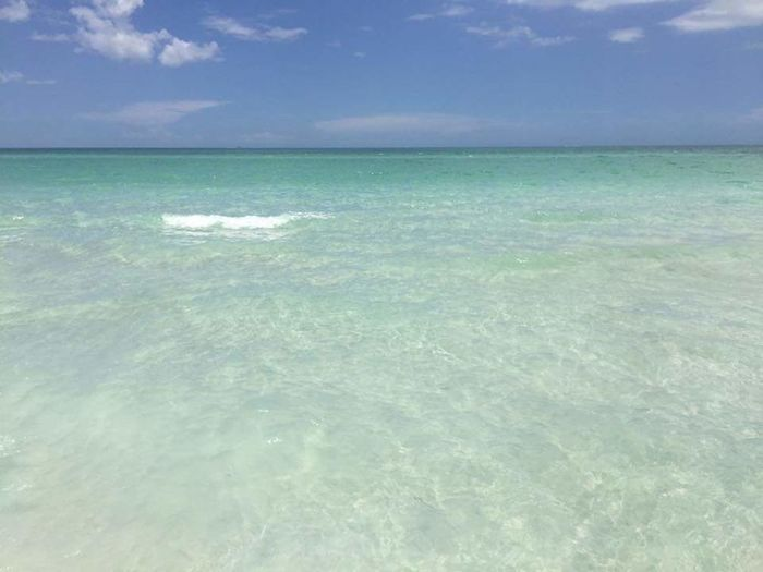 Clear water beach day Clear Water Beach Life Beach Day Florida Life Anna Maria Island White Sand Blue Water Blue Sky Almost Perfect Florida Afternoon Florida Life Wish You Were Here