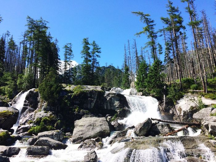 Waterfall Nature Flowing Water Beauty In Nature Tree Forest Scenics Motion Tranquil Scene River Clear Sky Water No People Tranquility Outdoors Day Sky Slovakia Hightatrasmountains Mountain Hightatras  Beauty In Nature Tree Growth Green Color