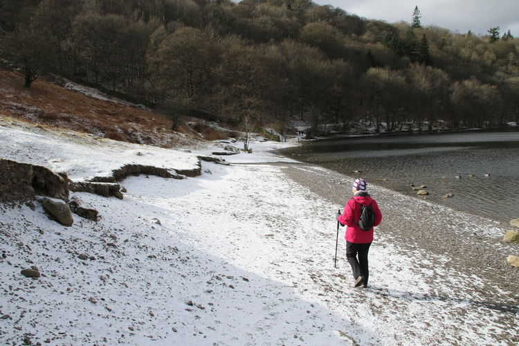 Rear view of woman walking on snow covered field by lake during winter
