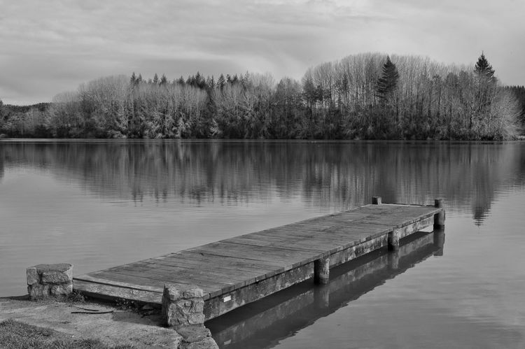 lake Aniwhenua, nz Lake Reflection Tree Water Nature No People Outdoors Beauty In Nature Having Fun EyeEm Nature Lover New Zealand Scenery Atmospheric Mood Black And White EyeEm Best Shots Kiwi Clicker Tranquility Eye4photography  Hello World Nature On Your Doorstep Getting Inspired Photography
