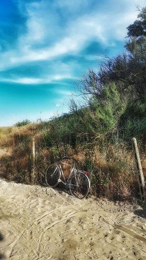 #bicycle Beach Sky Sand Sandy Beach