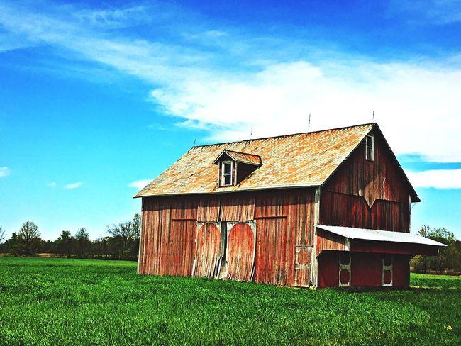 EyeEmNewHere Barn Grass Sky Farm Agriculture